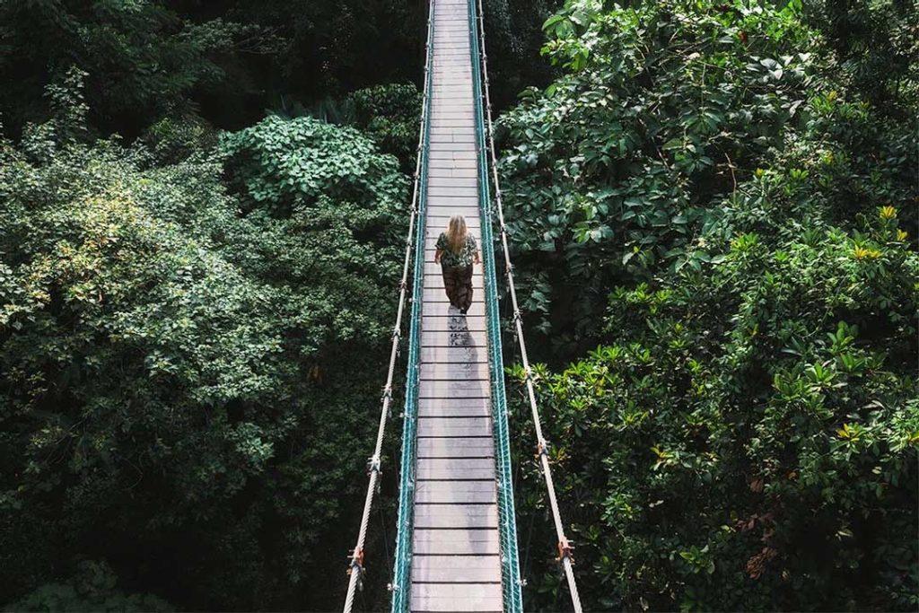 KL Eco Forest - Kuala Lumpur, Malaysia