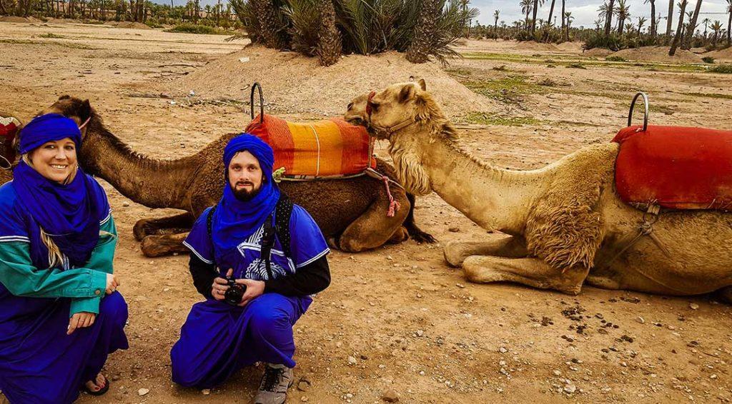 Camel safari, Palm Grove, Morocco