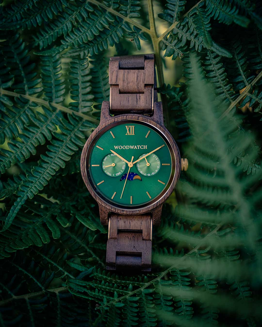 WoodWatch photography